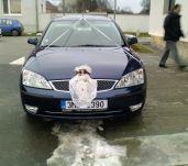 Ford Mondeo 2.5 V6 PO SERVISU PODVOZKU